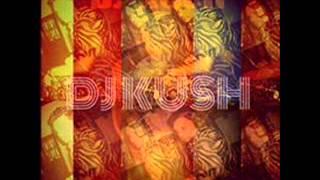 Feeling on Fire Mixtape by Dj Kush