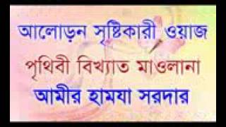 বাংলার জাকির নায়েক,  মাওলানা আমির হামজা