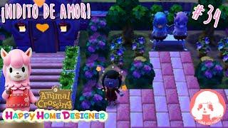 Animal Crossing Happy Home Designer - #34 - ¡Nidito de amor! Amiibo Paca