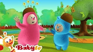 Billy Bam Bam Go Orange Picking | BabyTV