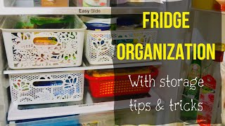 Fridge Organization / How to store green leafy vegetables/ how to store bananas for long time