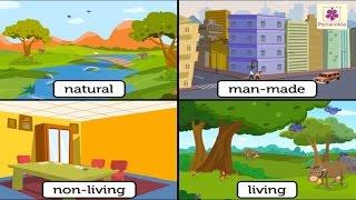 Natural And Man Made Things | Environmental Studies For Kids | Grade 3 | Vid #1