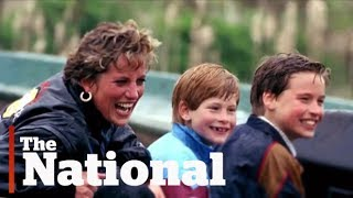Prince William, Prince Harry regret final phone call with Diana