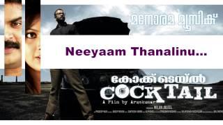 Neeyam Thanalinu | Cocktail