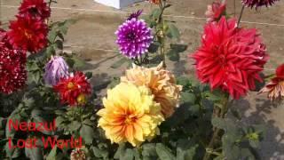 Thunko Kancher Churi Diye-Md Ali Siddiqui