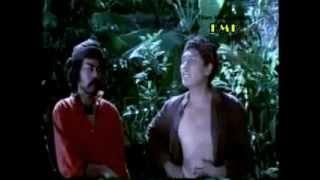 Si Pitung 2 (Dicky Zulkarnaen) (1971) Full Movie