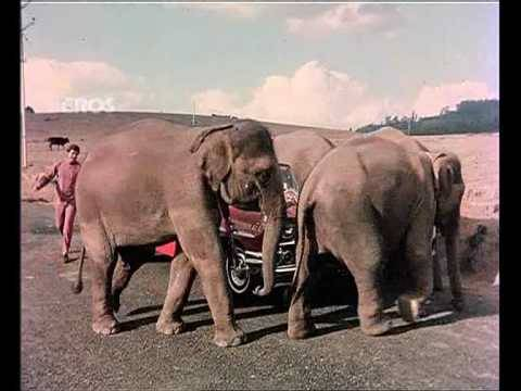 Xxx Mp4 Chal Chal Chal Mere Saathi Old Video Song Haathi Mere Saathi Rajesh Khanna Tanuja 3gp Sex