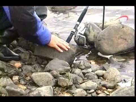 ловля налима в октябре с лодок видео