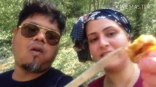 Travel Vlog day 11  PICNIC IN GOLESTAN FOREST IRAN 