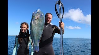 SPEARFISHING and first SHARK encounter Episode 39 (Sailing Catalpa)