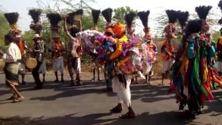 Chhotaudepur timali