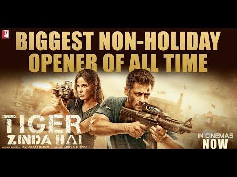 Xxx Mp4 Tiger Zinda Hai FULL MOVIE Fact Salman Khan Katrina Kaif Ali Abbas Zafar 3gp Sex