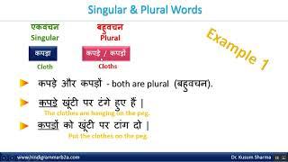 Hindi Grammar - Singular And Plural [ English Language ]