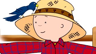 Funny Animated Cartoon Caillou |  Shoo, Shoo Bird, Fly Away |  Animated Funny Cartoons for Children
