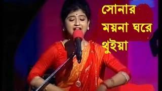 রশিক আমার মন বান্ধিয়া পিঞ্জর বানাইছে    Roshik amar mon bandhia pinjor banaise