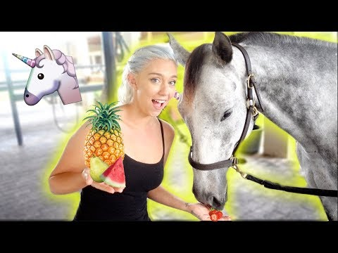 Xxx Mp4 WILL SHE EAT IT MY HORSE TRIES FRUITS AND VEGGIES 3gp Sex