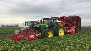 Grimme Rootster 604 rooidemonstratie Swifterbant