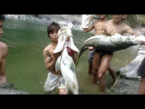 Fishing in Tizu river