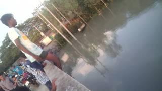 sarishabari shamotho bari river