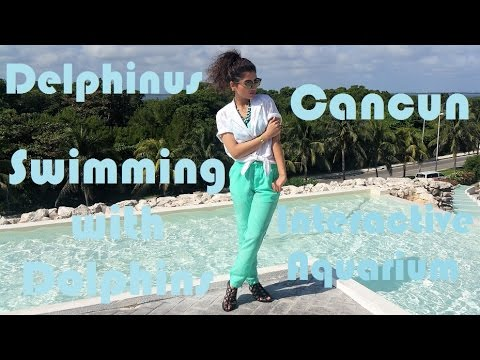 Travel Vlog Cancun Swimming with Dolphins & Delphinus Tour Fictionally Flawless