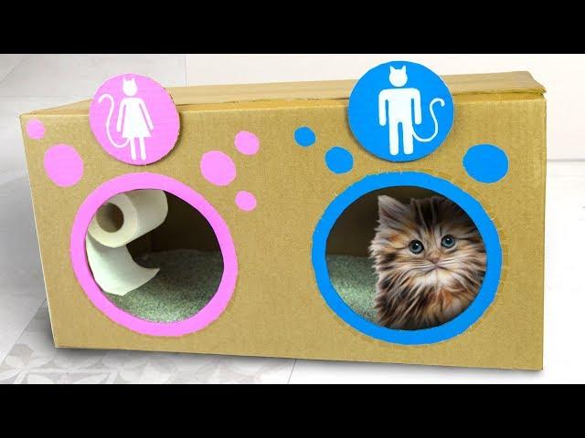 DIY Katzetoilette | Bastelideen für Kinder mit Box Yourself