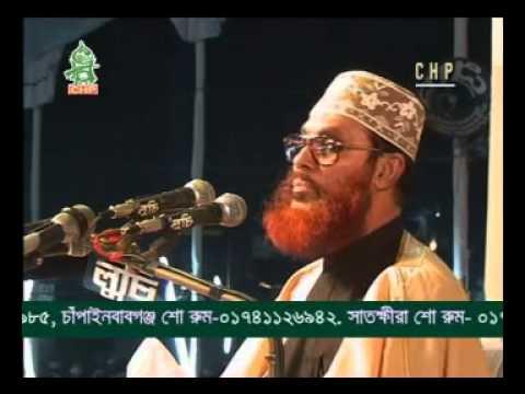 Delwar Hossain Sayeedi Allah Siristir Bishalota