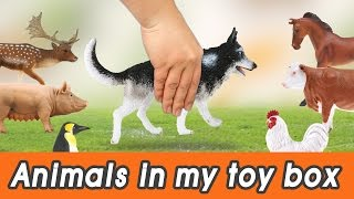 [EN] #59 Cute Animals in my toy box! kids education, Dinosaurs animationㅣCoCosToy