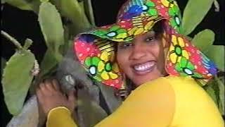 Dandali Soyaya -  Adawarmu (Director Hausa) [Video]