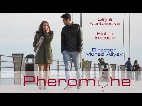 Xxx Mp4 Feromon Pheromone Short Film 3gp Sex