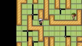 Pokemon Sapphire Walkthrough Part 65: Trick House and Evergrande City
