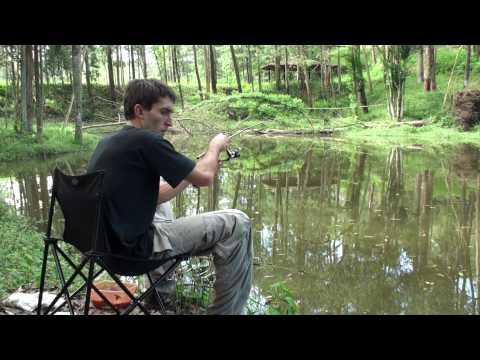Pescaria Ultralight de Piau Audio Ambiente