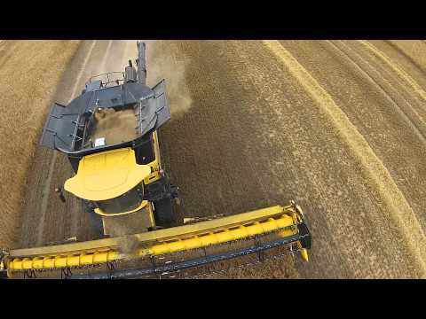 New Holland CR 10.90 Combine Winter Barley Norfolk