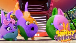 Cartoons for Children | Sunny Bunnies COLOR CRAZY | Funny Cartoons For Children