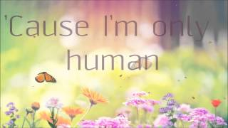 Christina Perri - Human Lyrics HD