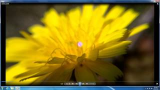 How to Open .MP4 files (Windows 7, Windows Media Player)