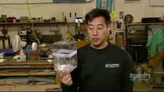 Mythbusters Cockroaches outliving a nuclear blast