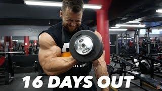 BODYBUILDING MOTIVATION - REGAN GRIMES 16 DAYS OUT