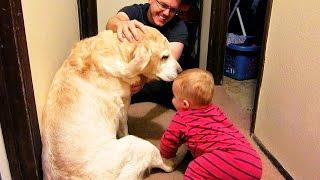 BABY LOVES DOG!!