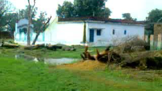 School of Sirsiya raja jogia shohratgarh siddharth nagar uttar pradesh india