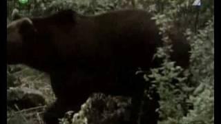 PA a PI (5) - Otuzilci v kozuchu