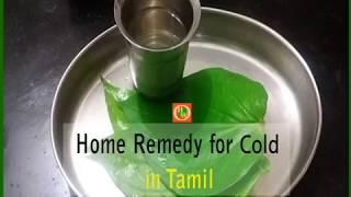 சளிக்கான சிறந்த மருந்து |  Home Remedy for Cold in Tamil |  Betel Leaf