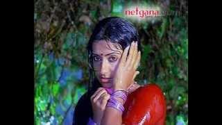 Hot Ambika saree navel wet collection