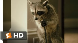 Furry Vengeance (5/11) Movie CLIP - Nature Fights Back (2010) HD