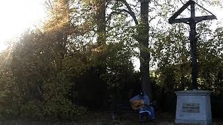 "Searching for a Heart ~ Warren Zevon ~ Cover w/ Gibson L-200 ""Emmylou Harris"" & Bluesharp"
