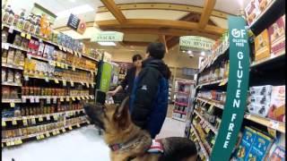 Seizure Alert Dog Saves 5th Grader
