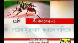Doctors suggest immediate blood test for slightest fever to detect Dengue