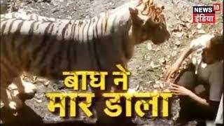 Delhi Zoo me Yuvak bagh ke baade me ghusa, Hamle me Maut | Delhi Zoo Tiger Attack | News18 India