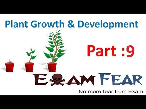 Biology Plant Growth & Development part 9 (Auxin Discovery) CBSE class 11 XI