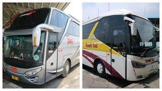 Bus DMI SHD & Dewi Sri SR2