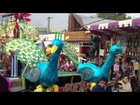 Carnaval santiago acahualtepec 2011 la reina mas jacarandosa